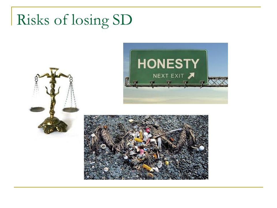 Risks of losing SD Environment, reputation, statutory duty