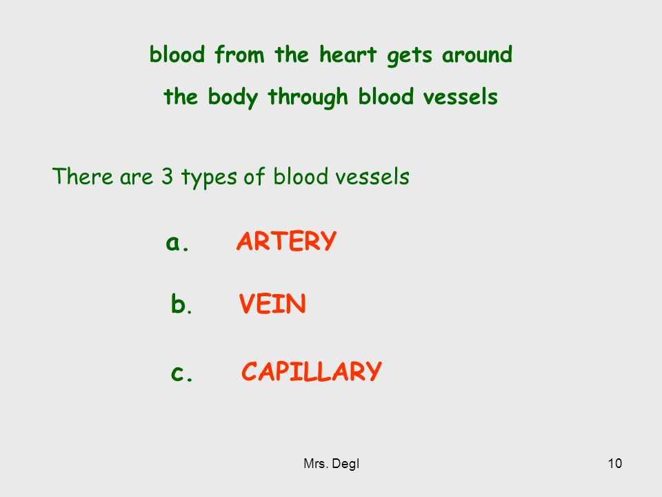 blood from the heart gets around the body through blood vessels