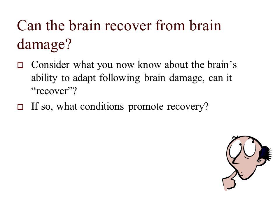 brain movie download