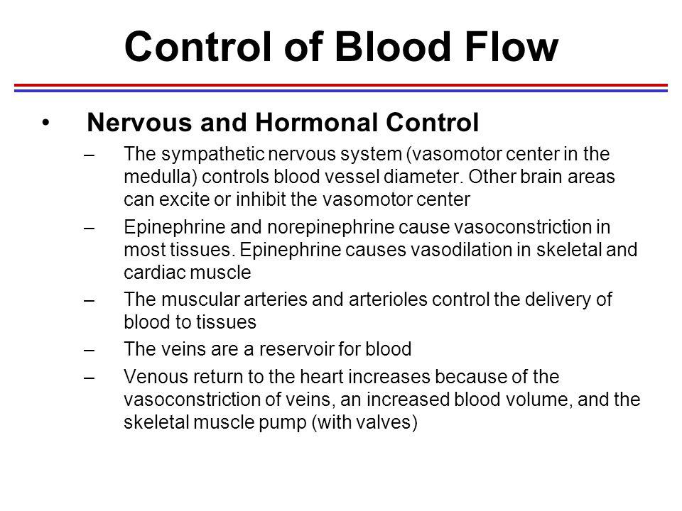 Sympathetic Nervous System - Definition, Function ...