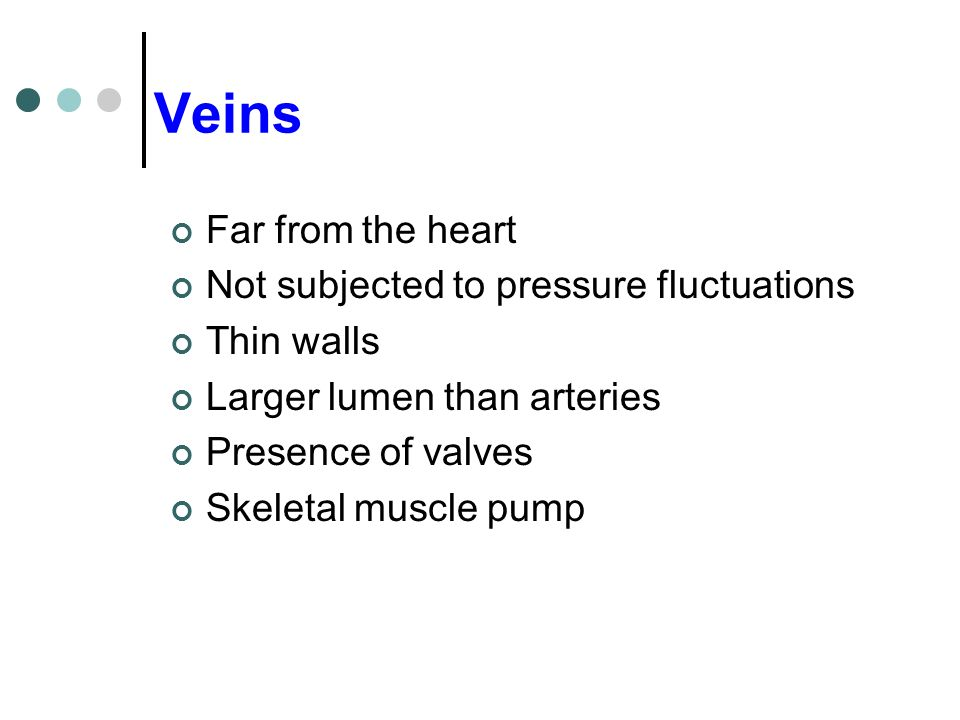 Veins Far from the heart Not subjected to pressure fluctuations