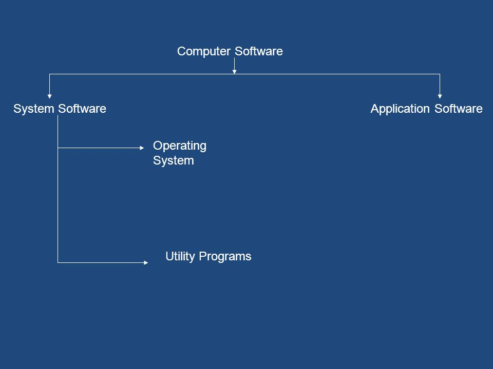 Computer Software System Software Application Software Operating System Utility Programs