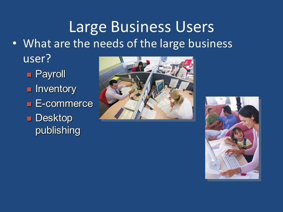 Large Business Users What are the needs of the large business user