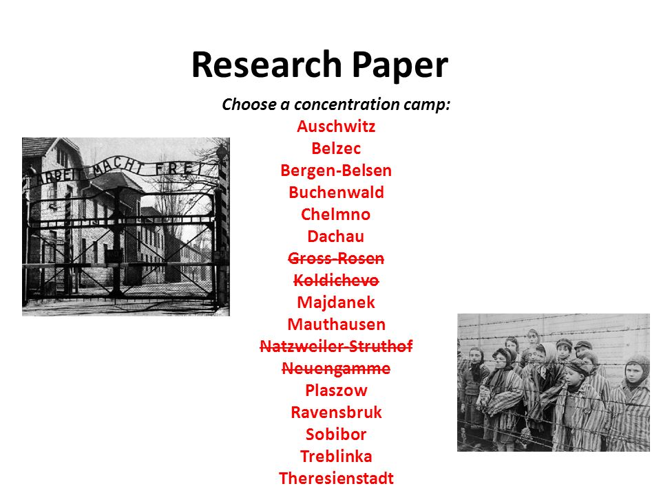 Auschwitz concentration camp research paper