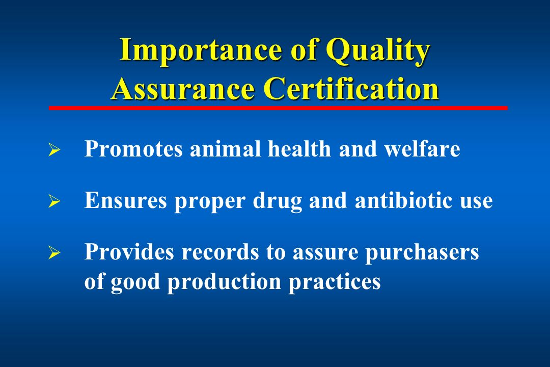 the importance of quality in a The importance of quality and its expanded role within your organization john cover cqa (asq) director, quality a di.