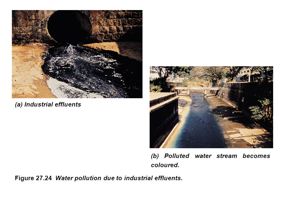 industrial effluents in the water pollution Water pollution: causes, effects domestic waste water, agricultural run-off, and industrial effluents contain phosphorus and metal and plastic effluents.