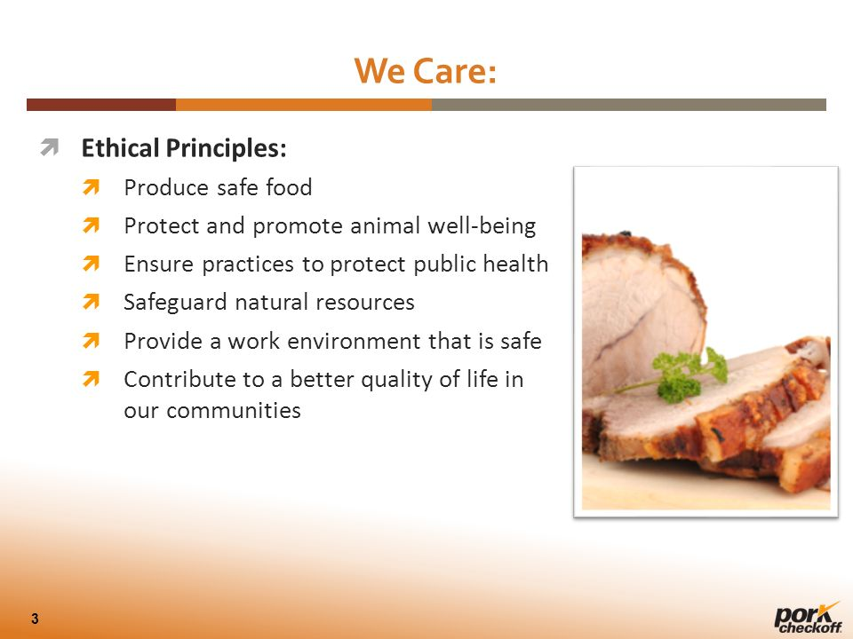 ethical principles with food pdf
