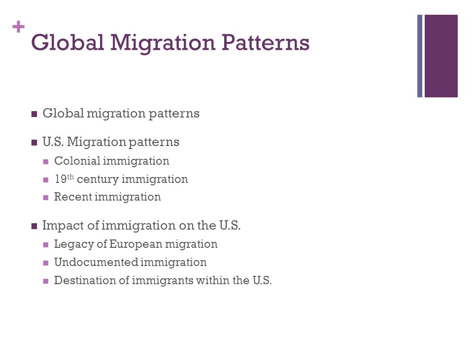 Global Migration Patterns