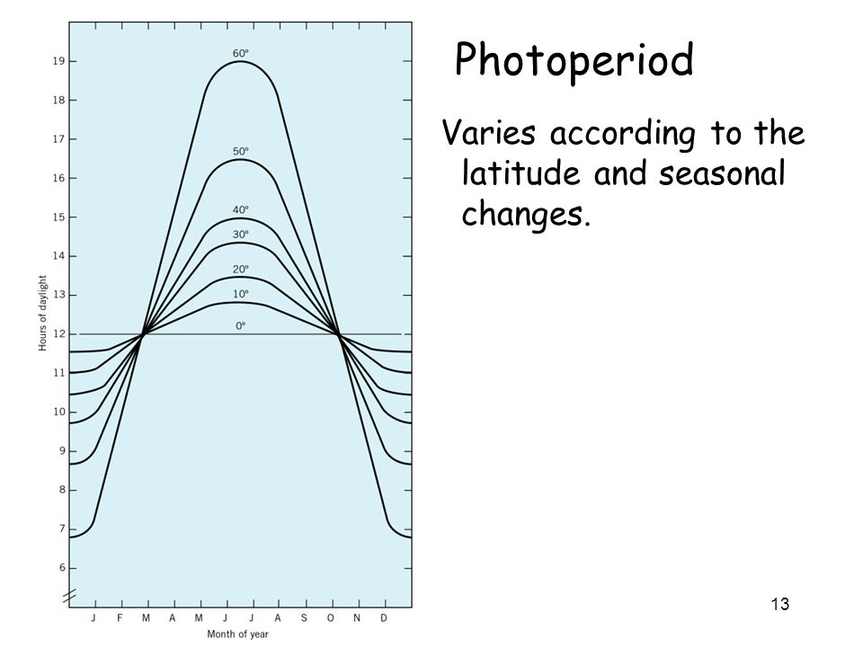 Photoperiod Varies according to the latitude and seasonal changes.