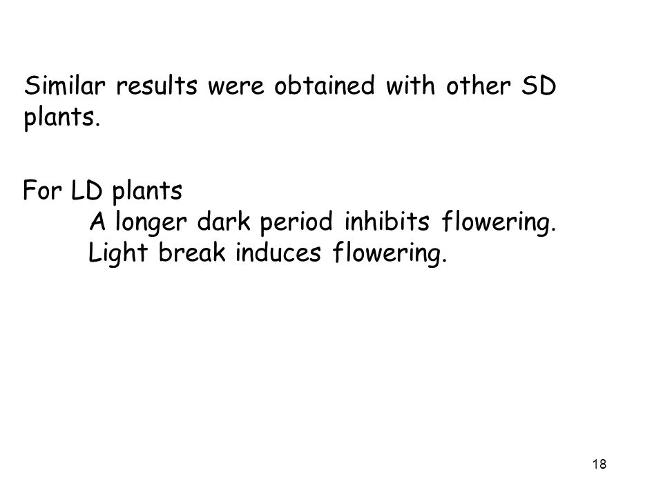 Similar results were obtained with other SD plants.
