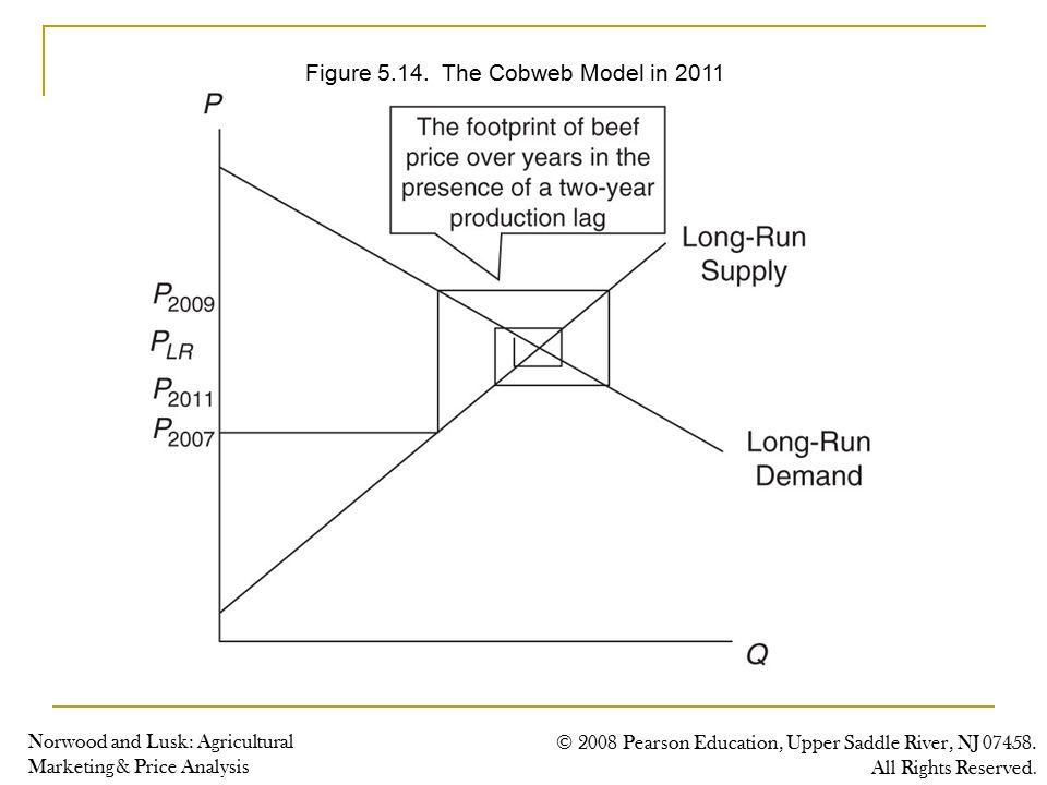cobweb cycle theory The cobweb theory of business cycles was propounded in 1930 independently by prof h schultz of america the cobweb theory is used to explain the demand , supply and price over long period of time assumption:.