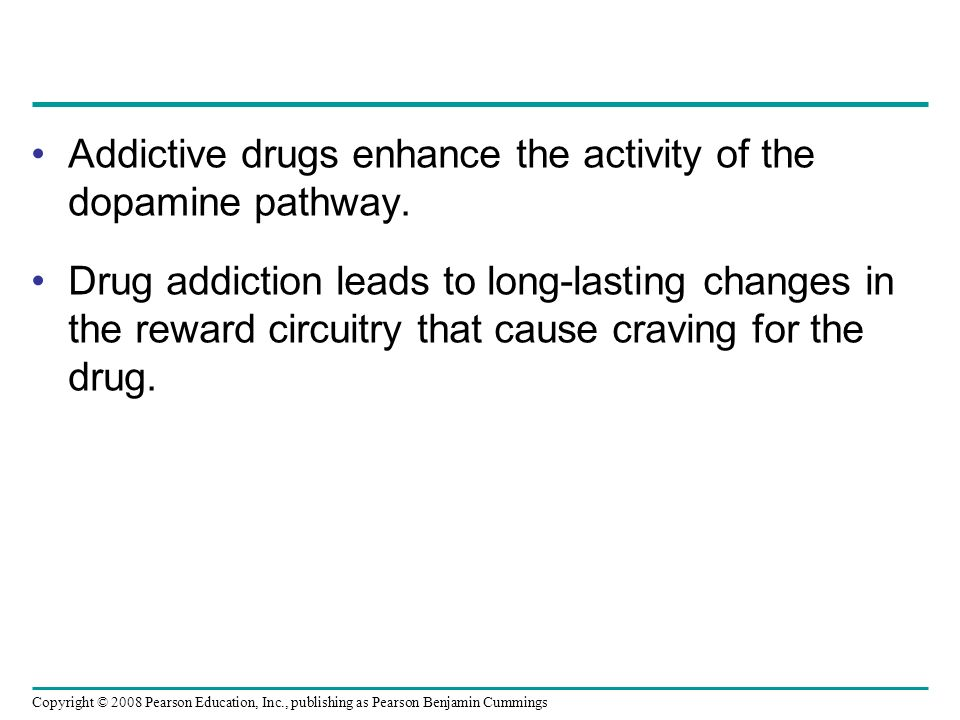 Heroin Addiction: Pathways to Treatment Essay