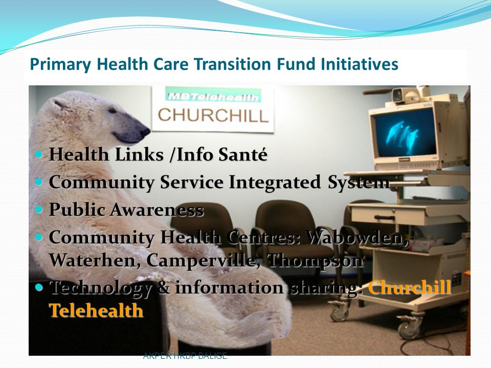 Primary Health Care Transition Fund Initiatives
