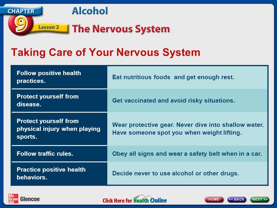 Chapter 9 Alcohol Lesson 2 The Nervous System Next ...
