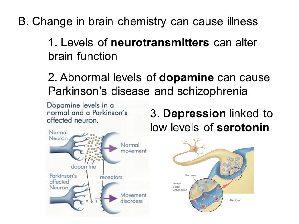B. Change in brain chemistry can cause illness
