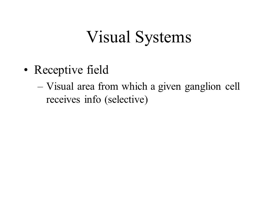 Visual Systems Receptive field
