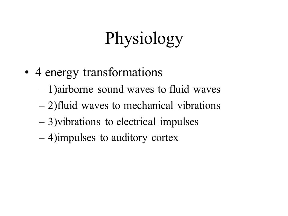 Physiology 4 energy transformations