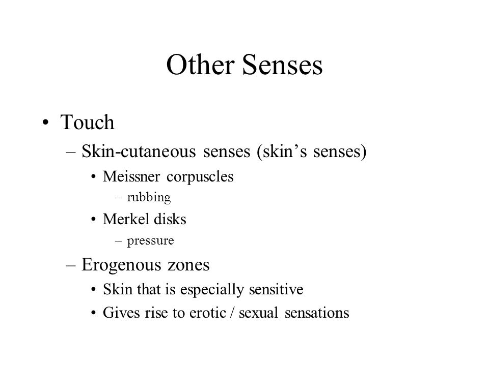 Other Senses Touch Skin-cutaneous senses (skin's senses)