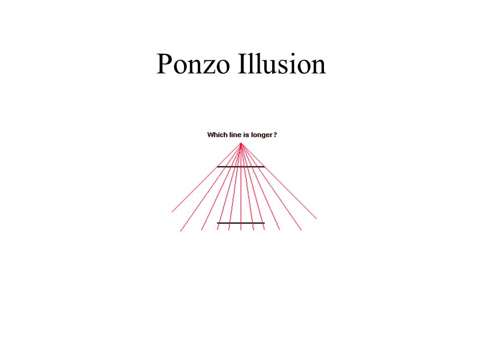Ponzo Illusion