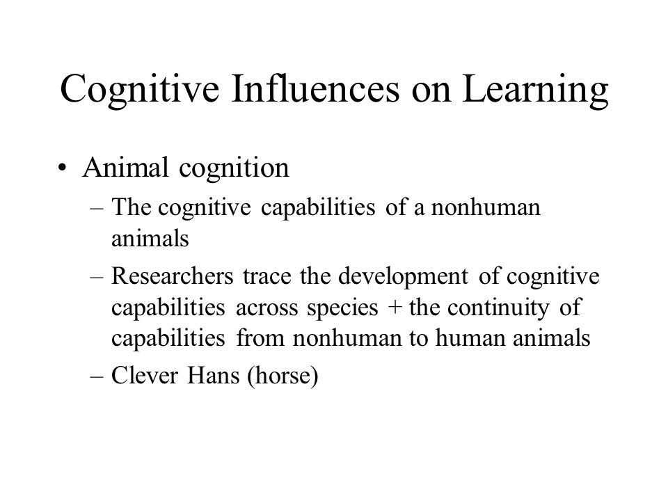 Cognitive Influences on Learning