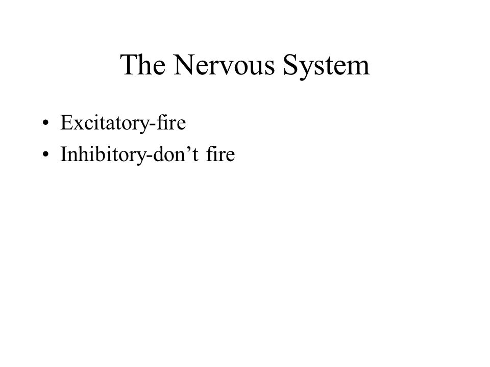 The Nervous System Excitatory-fire Inhibitory-don't fire
