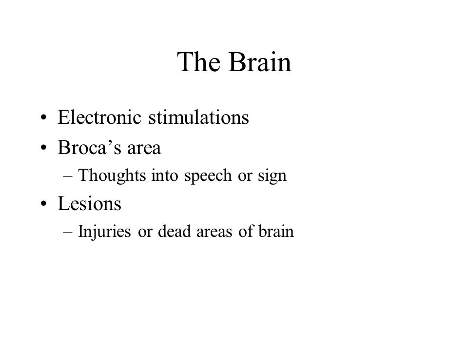 The Brain Electronic stimulations Broca's area Lesions