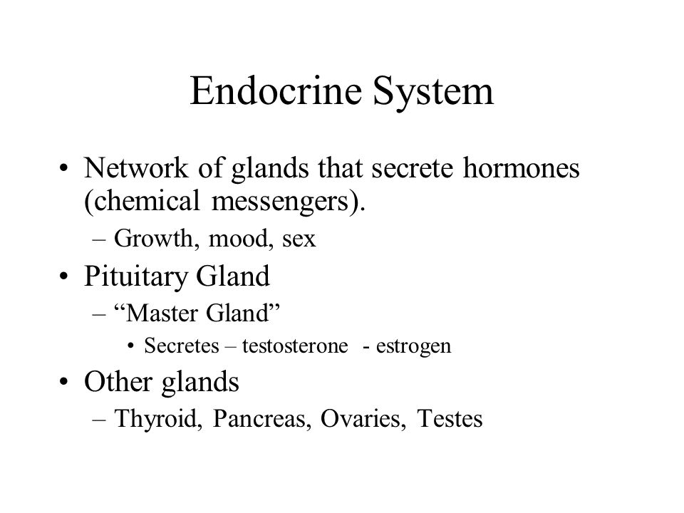 Endocrine System Network of glands that secrete hormones (chemical messengers). Growth, mood, sex.