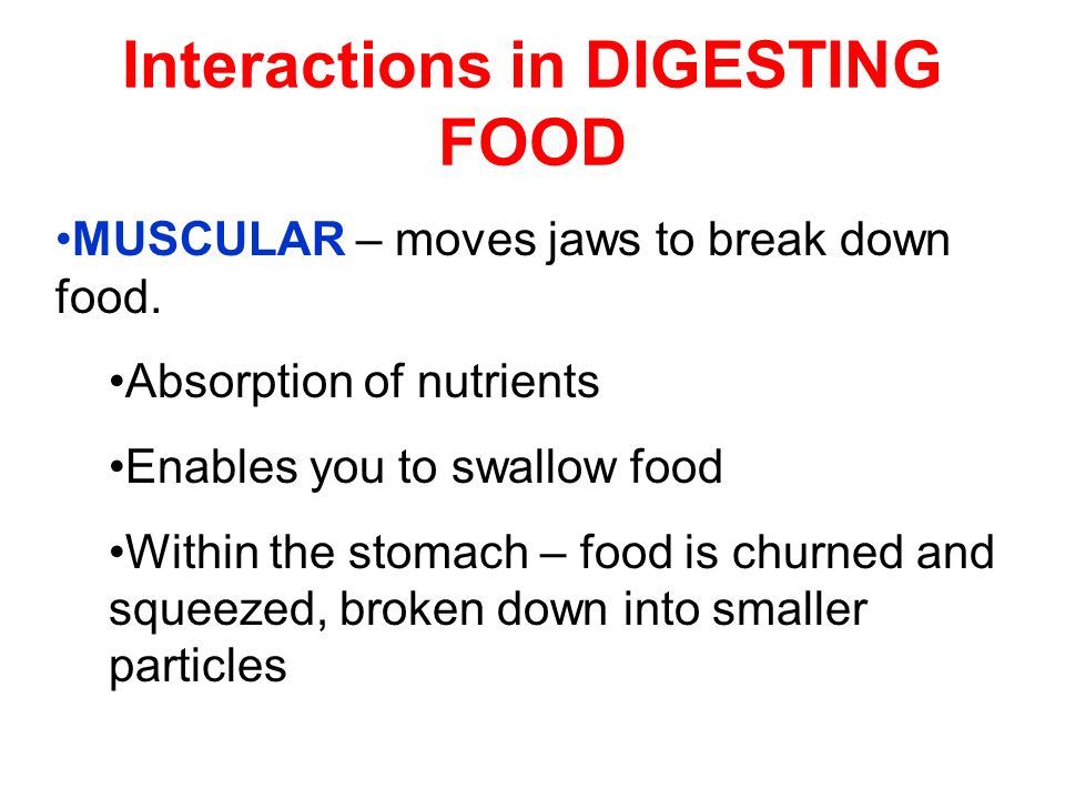 Interactions in DIGESTING FOOD