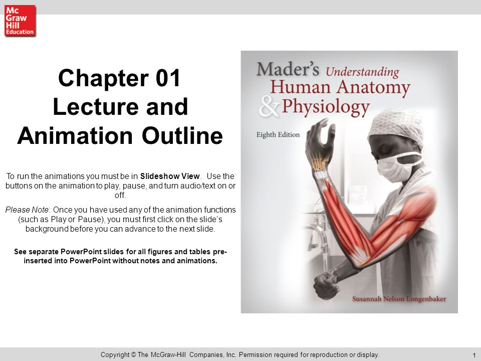 Chapter 01 Lecture and Animation Outline - ppt video online download