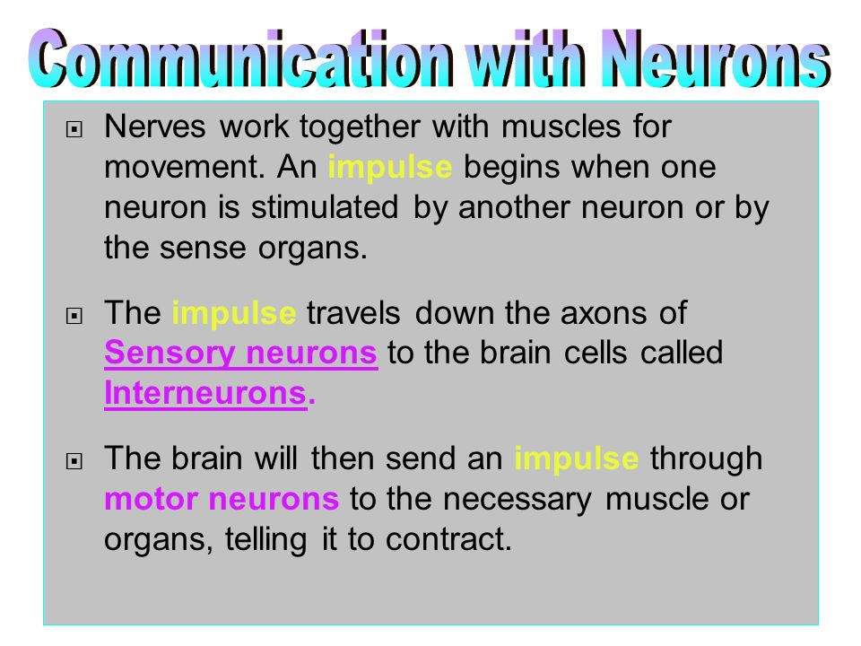 Communication with Neurons