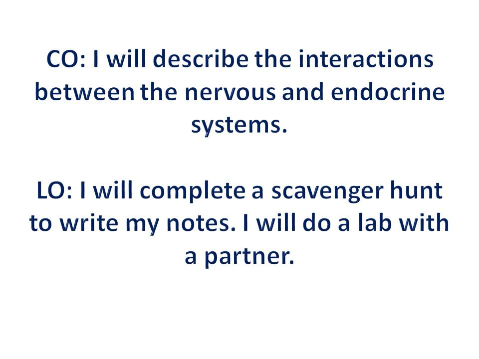 CO: I will describe the interactions between the nervous and endocrine systems.