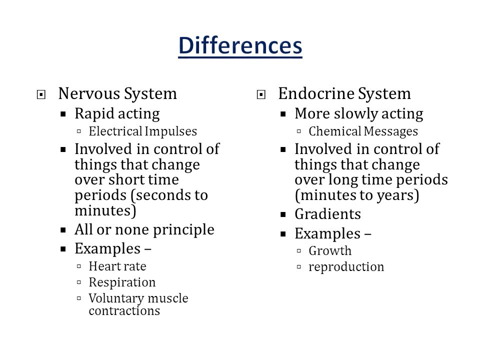 Differences Nervous System Endocrine System Rapid acting