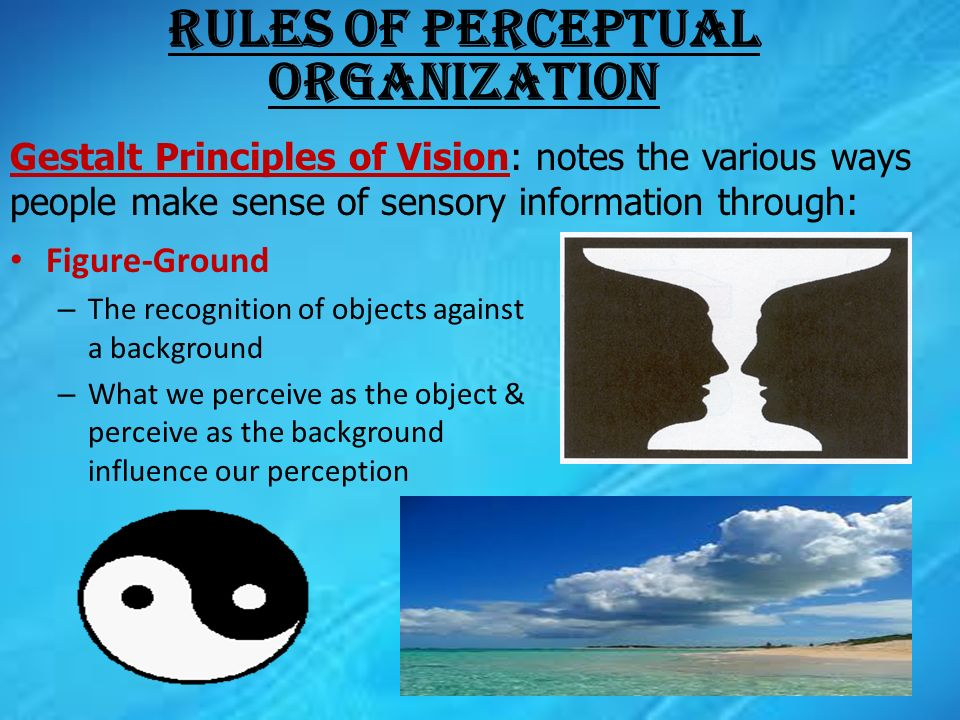 sense of perception These up-to-date real life situations for sense perception will help you to grasp the nature of knowledge in this wok, and prompt debate and discussion.