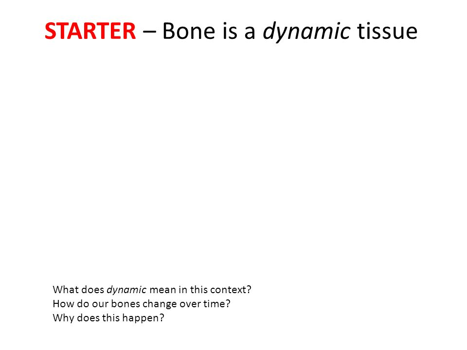 case study 2 bone tissue questions Study flashcards on anatomy and physiology review questions from chapter 6 bone tissue at cramcom quickly memorize the terms, phrases and much more cramcom makes it easy to get the grade.