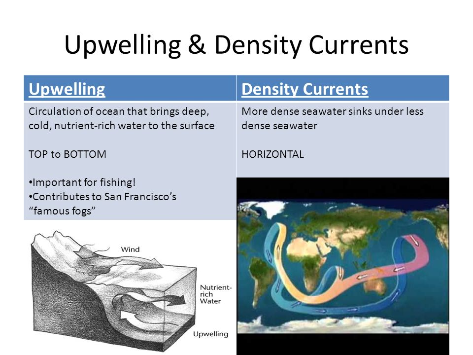 Upwelling & Density Currents