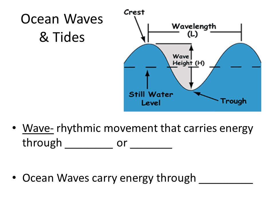 Ocean Waves & Tides Wave- rhythmic movement that carries energy through ________ or _______.