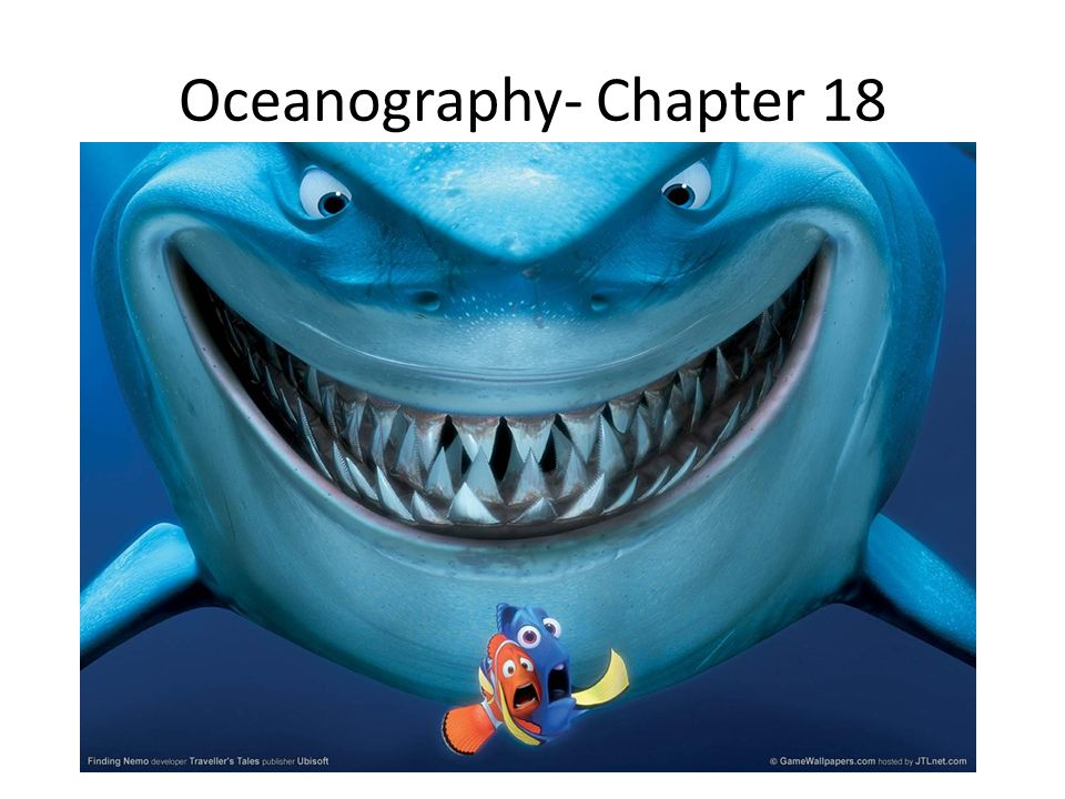 Oceanography- Chapter 18