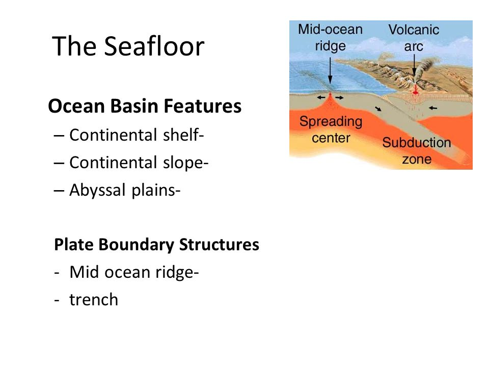 The Seafloor Ocean Basin Features Continental shelf-