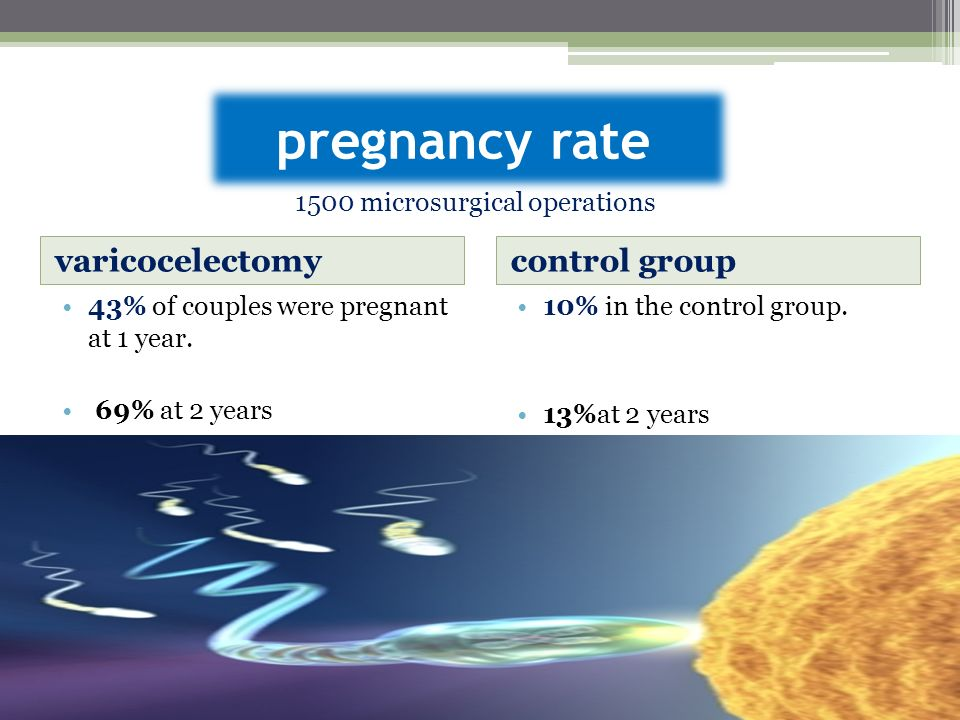 pregnancy rate varicocelectomy control group