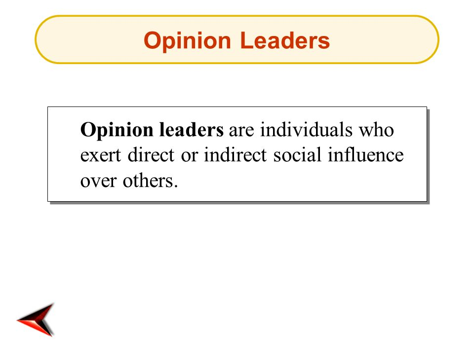 Opinion Leaders Opinion leaders are individuals who exert direct or indirect social influence over others.
