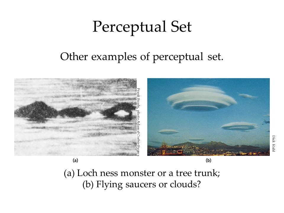 perceptual set Perceptual set is the predisposition, or 'readiness', to perceive something in accordance with that we expect it to be there are several factors that can influence the perceptual set.