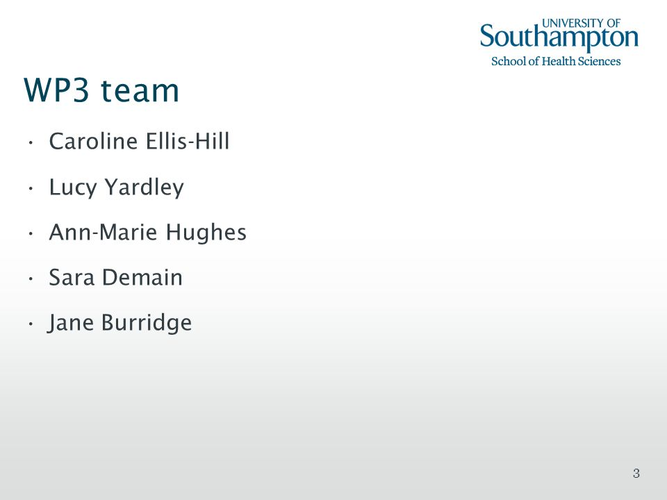 WP3 team Caroline Ellis-Hill Lucy Yardley Ann-Marie Hughes Sara Demain