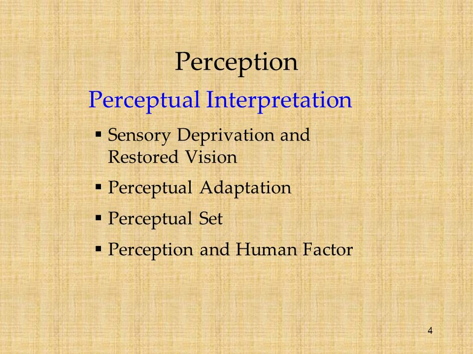 perception and attention paper Sensation, perception, and attention paper sensation, perception, and attention are important in order to effectively understand and learn in any aspect.