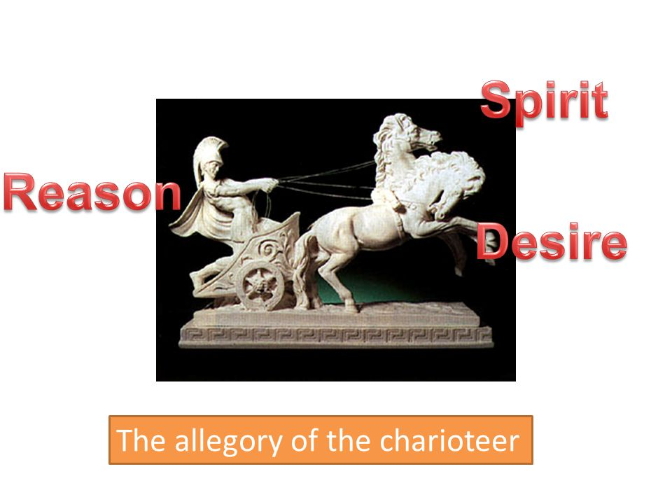 Spirit Reason Desire The Allegory Of The Charioteer on Three Parts Of The Soul