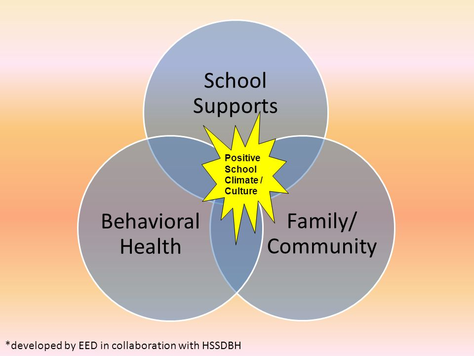 School Supports Behavioral Health Family/ Community