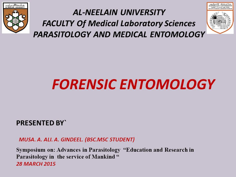Forensic Entomology Musa A Ali A Gindeel Bsc Msc Student Ppt Video Online Download