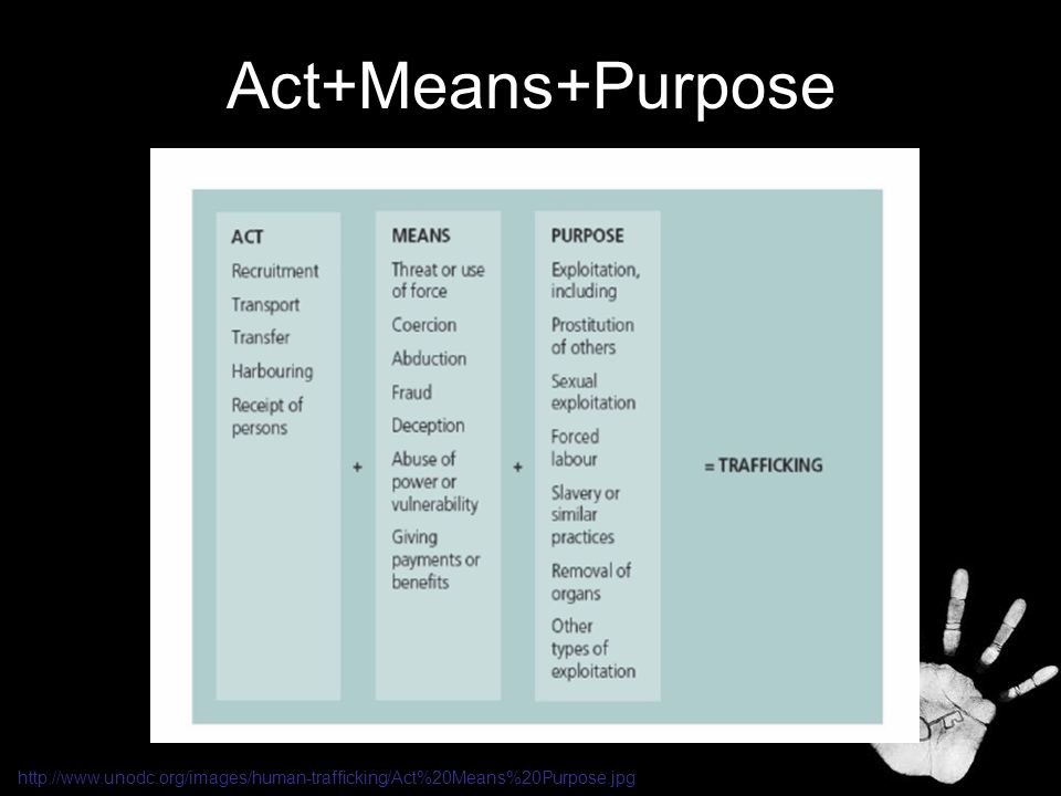 Act+Means+Purpose