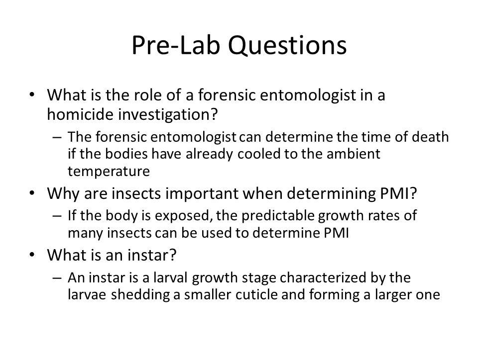 The Mystery of Lyle and Louise A Forensic Entomology Lab ppt – Forensic Entomology Worksheet