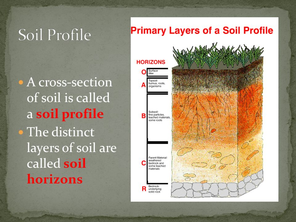 Soil man despite his artistic pretensions his for What is important to know about soil layers