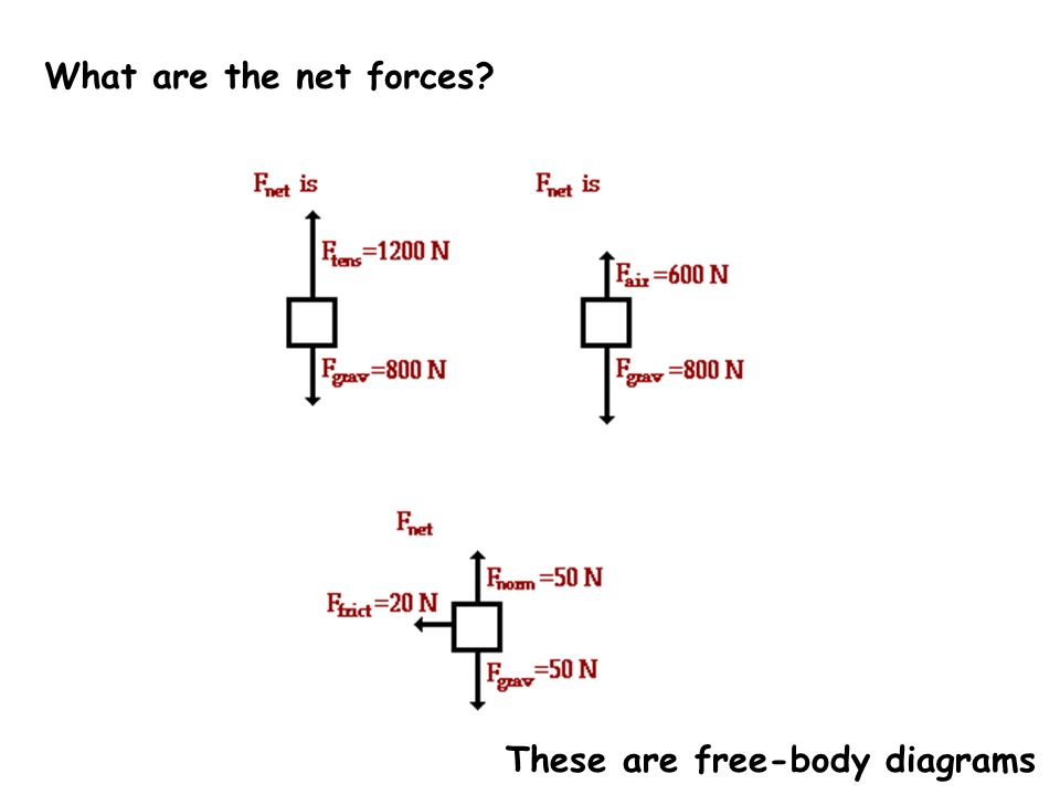 What are the net forces These are free-body diagrams